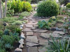 Magical garden pathways at The Vales